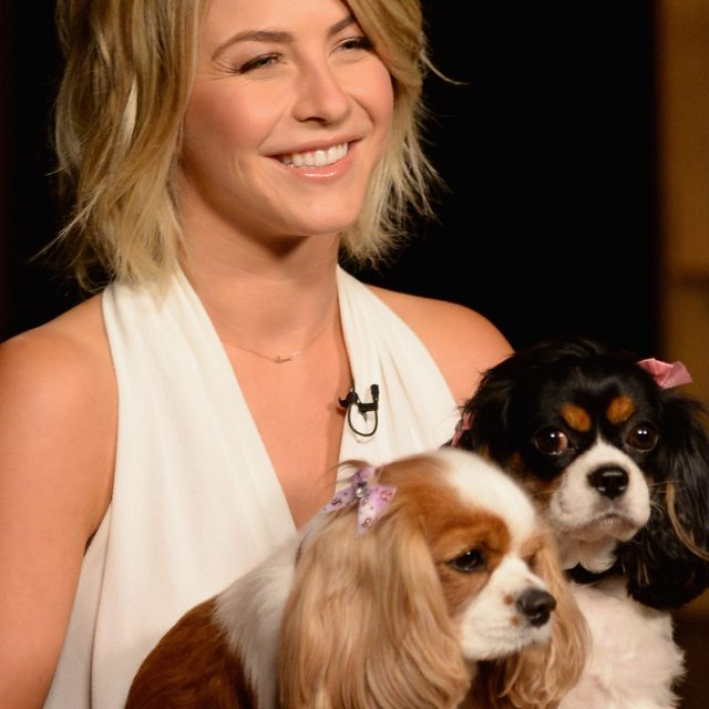 Babies Julianne Hough, Brooks Laich mourn heartbreaking deaths of their dogs: 'Love you forever'