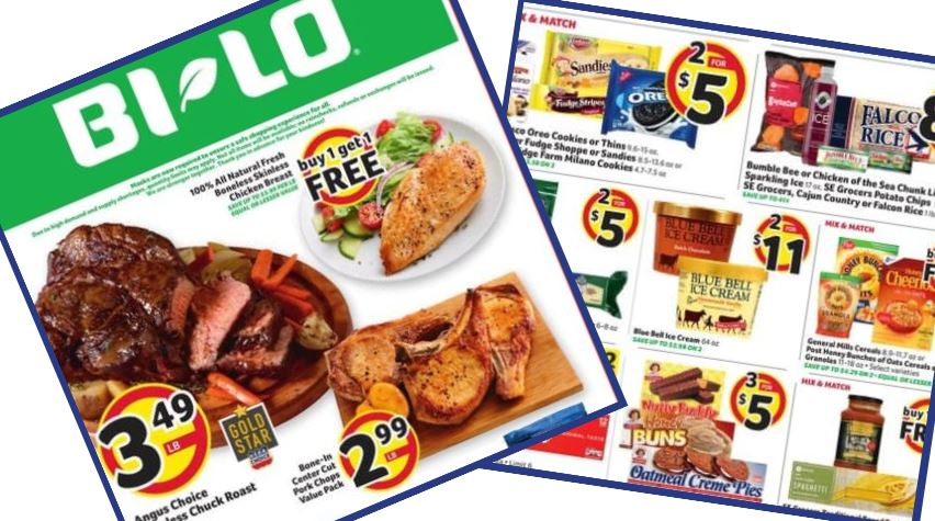 Baby Health in Winter Bi-Lo Weekly Ad: 9/9-9/15
